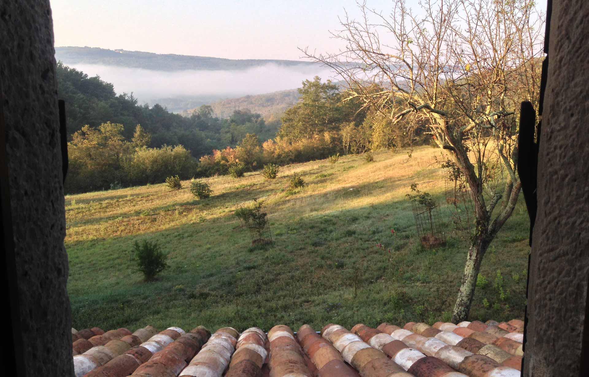 Kucica view